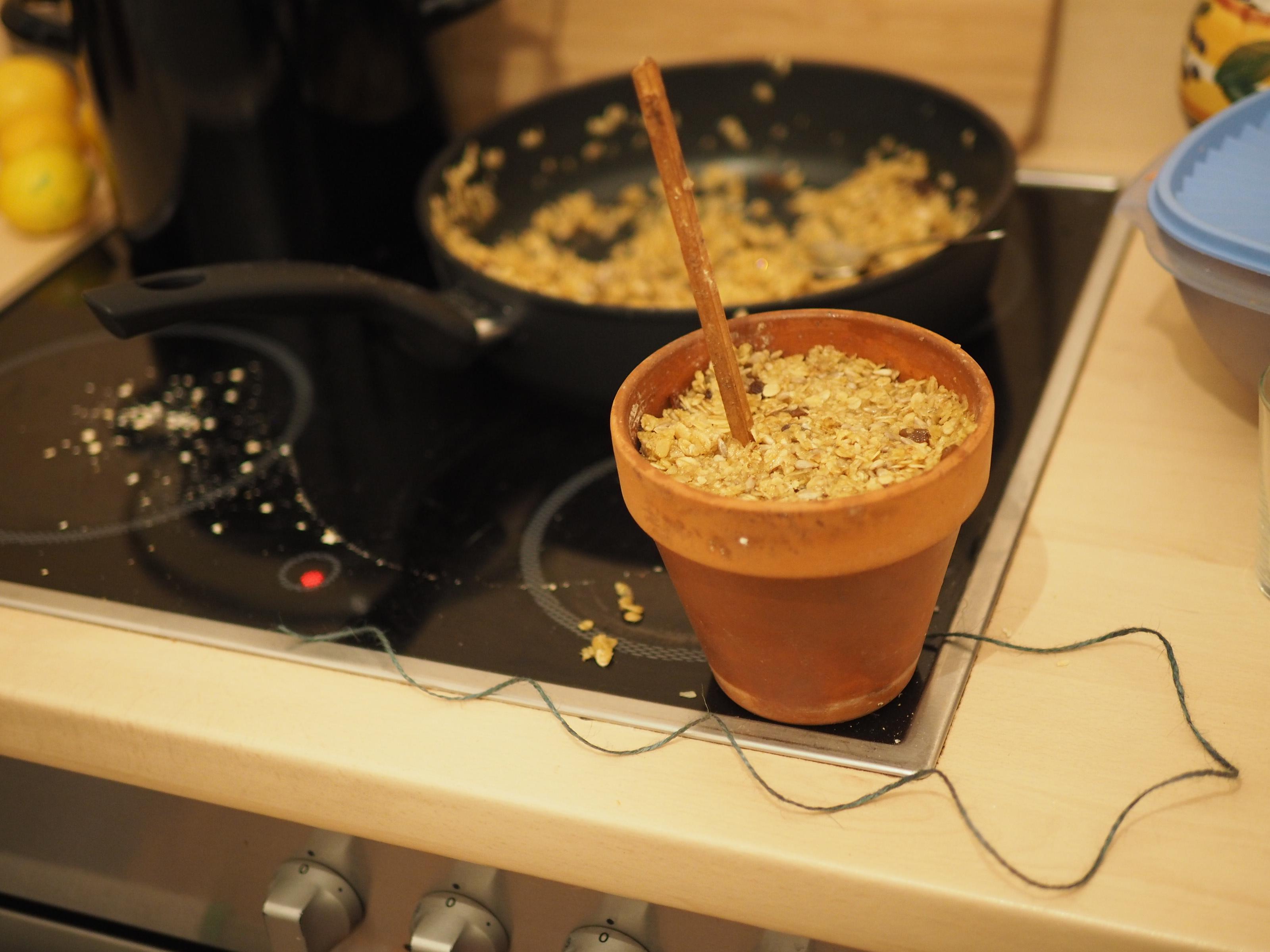 Vogelfutter Selber Machen Rezept : vogelfutter selber machen ein schnelles rezept ~ Lizthompson.info Haus und Dekorationen